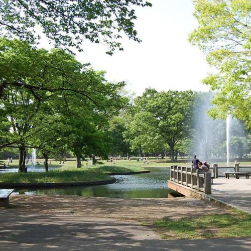 あぽろ東京撮影会 代々木公園
